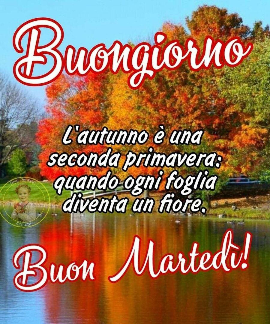 buon-martedi-138 - BuongiornoGalleria.it