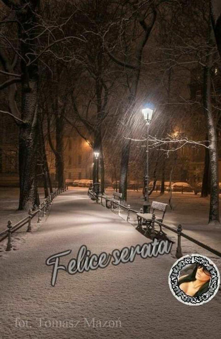 buona-serata-invernale-02
