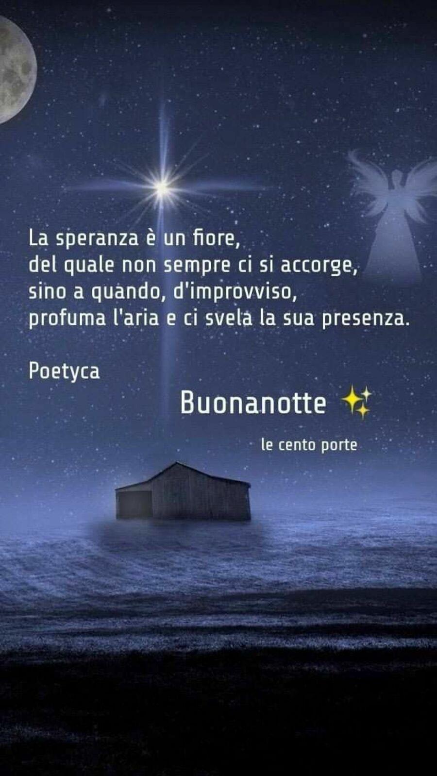 buonanotte-invernale-05