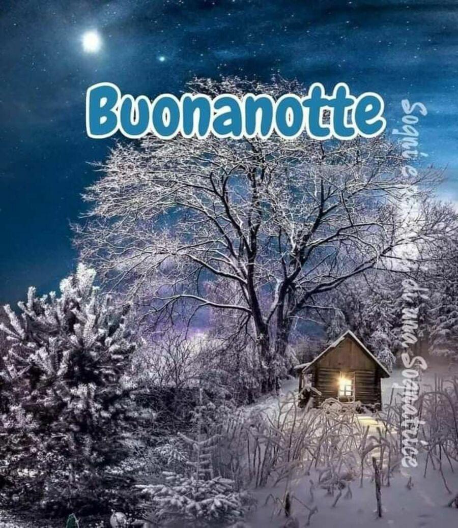 buonanotte-invernale-06
