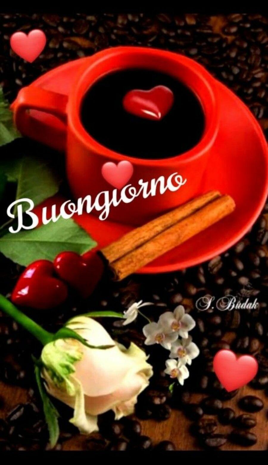 buongiorno-caffe-immagini-0952