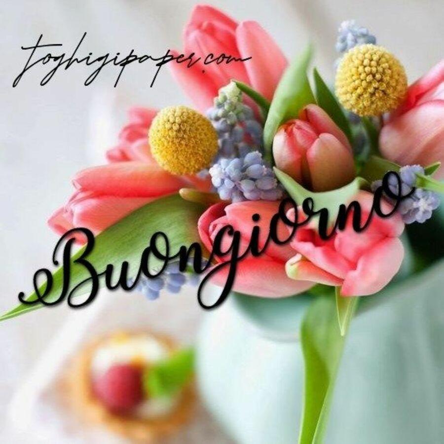 buongiorno-immagini-fiori-05