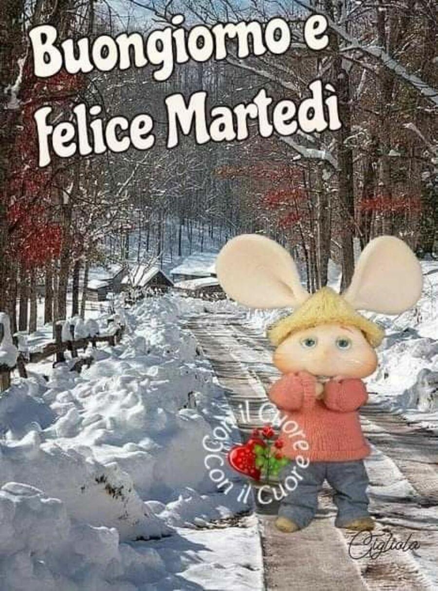buongiorno-martedi-invernale-19