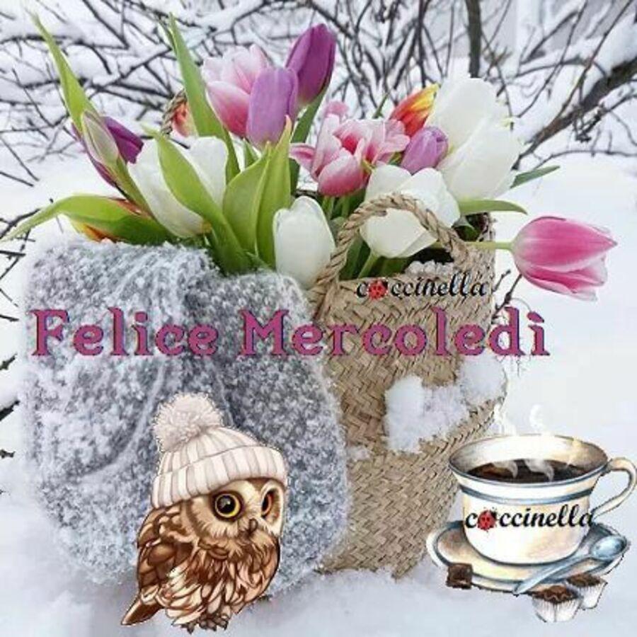 buongiorno-mercoledi-invernale-13