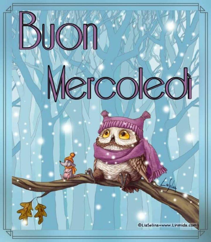 buongiorno-mercoledi-invernale-24